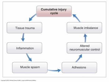 Cumulative Injury Cycle SMR blog PNG